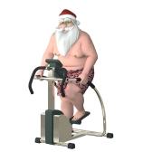 Santa Fitness - Stair Stepper